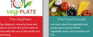 pubblicate-sul-journal-of-the-academy-of-nutrition-and-dietetics-le-linee-guida-italiane-del-piattoveg