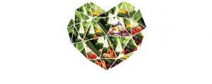"""""""Alimentazione vegetariana: salute e sostenibilità per il nostro futuro. L'evidenza scientifica contro le fake-news"""", questo il nome del prossimo congresso"""